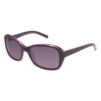 Brendel 906025 Sunglasses